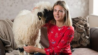 21-year-old turns heads when she takes her 'puppy' for walks – as it's actually a sheep!