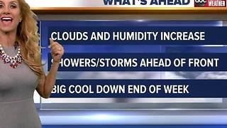 Action Weather Forecast