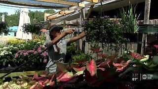 Tampa garden shop keeps business alive with house calls