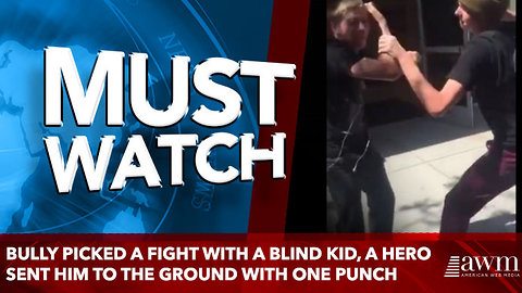 bully picked a fight with a blind kid, a hero sent him to the ground with one punch