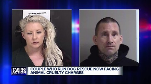 Couple who run dog rescue now facing animal cruelty charges