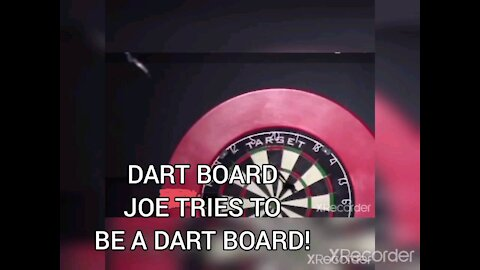 DART BOARD JOE