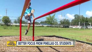Wellness program at Pinellas County schools has kids showing better grades, concentration - Video