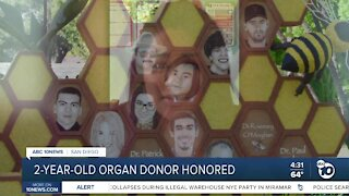 2-year-old organ donor remembered