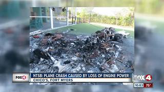 Cause of plane crash released