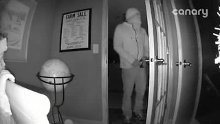 Gretna prowler caught on camera sought by Sarpy County Sheriff - Video