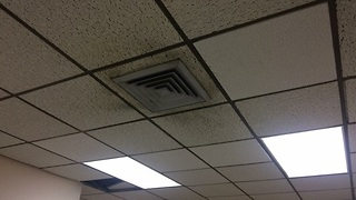 City council meets about mold problem