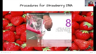 Science Sundays: Extracting DNA from a Strawberry (FULL EXPERIMENT)