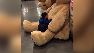 Teddy Bear Takes Revenge - Video