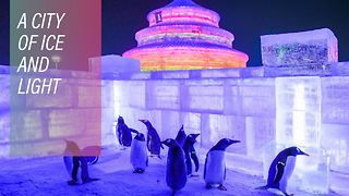 Why China's winter wonderland beats everyone else's - Video