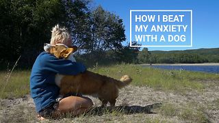 Owning A Pet Friend Can Be Very Therapeutic  - Video