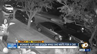 Woman's suitcase stolen after ordering rideshare - Video