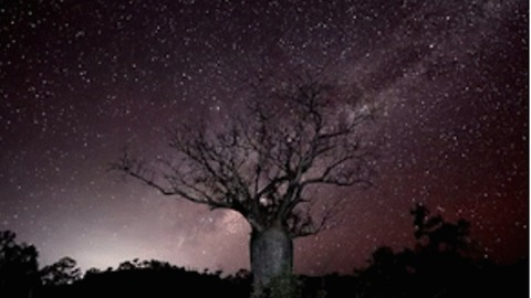 Clear Night Skies Above Kimberley Makes for Awesome Astrophotgraphy