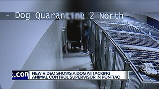 Policy changes follow dog attack at Oakland County Animal Control