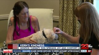 Therapy dogs brings joy to Hoffman Hospice