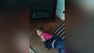 A Tot Girl Fights With A Dog Over Rope - Video