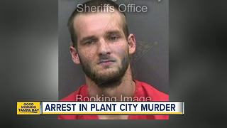 Man charged in fatal stabbing in Plant City - Video