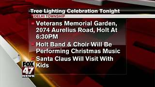 Tree lighting celebration tonight in Delhi Township - Video