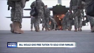 Democrats back free tuition for fallen service members' kids