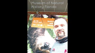 Museum of natural history Florida