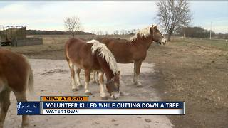 Longtime Old World Wisconsin volunteer dies in tragic accident - Video