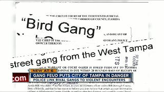 Gang feud puts City of Tampa in danger - Video