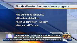 SNAP offers food assistance after Hurricane Irma - Video