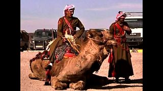 Police Camels - Video