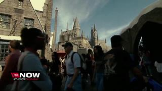 New 'Harry Potter' roller coaster to replace 'Dragon Challenge' at Universal Orlando - Video