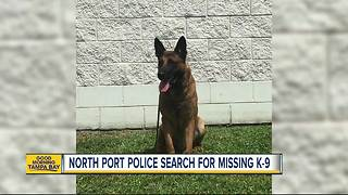 Deputies need your help to locate missing Sheriff's Office K9 - Video