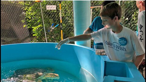 Wish for an experience with sea turtles granted in Boca Raton to young Kansas teen battling cancer