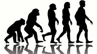 10 Weird Facts About Human Evolution - Video