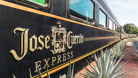 Trendist: All Aboard the Unlimited Tequila Train!