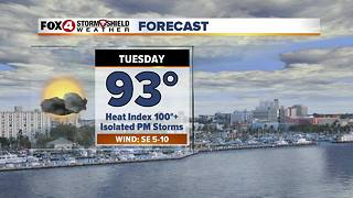 FORECAST: Hot and Humid with Scattered Storms 6-18 - Video