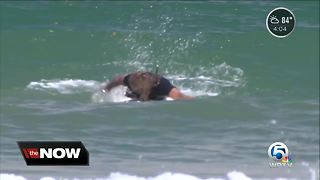 Shark bites surfer in St. Lucie County