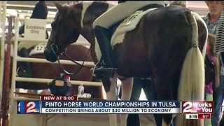 Pinto Horse World Championship returns to Tulsa - Video