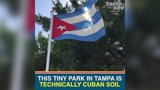 Take a quick trip to Cuba without leaving Tampa Bay - Video