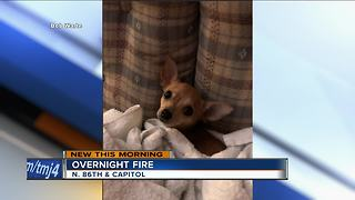 2 families displaced including puppy - Video
