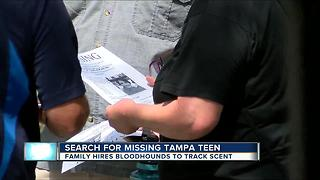 Search for missing 17-year-old girl - Video