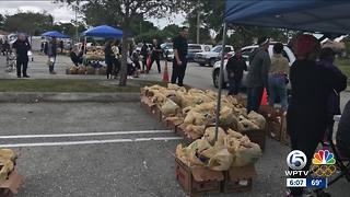 Annual Farm Share Food Distribution held on Saturday in West Palm Beach - Video