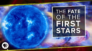 The Fate of the First Stars