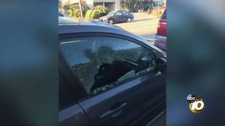 Neighbors wake up to car vandalism