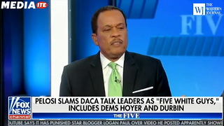 Fox Hosts Roast Pelosi After 'Five White Guys' Statement: Dems 'Allowed to be Racist' - Video