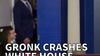 Gronk Crashes White House Press Briefing - Video