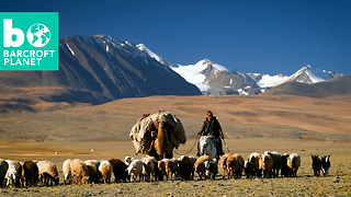 Rare Look Into Kazakh Nomads' Epic Migration - Video