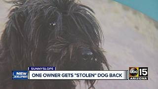 Phoenix pet owner gets dog returned - Video