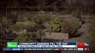 Community gardens are helping millions put food on the table