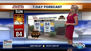Gusty winds and warm Spring highs