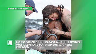 Horse Stuck Sinking Fast Mud. His Owner Was Desperate For Help Until A Hero Emerged - Video