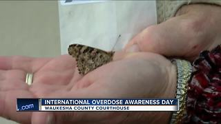 Butterflies released to raise awareness of opiates overdoses - Video